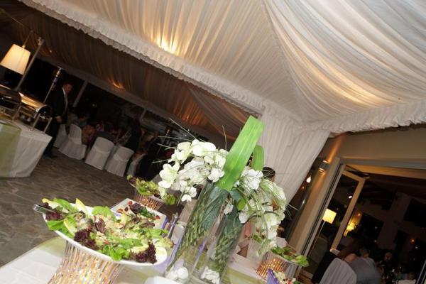 Κτήμα Γάμου Φιλιππικόν Σαλαμίνα